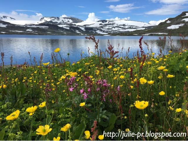 Норвегия, Finse 1222