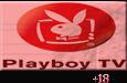 ver playboy en vivo gratis y directo por internet 24 horas online