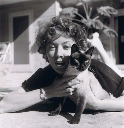 Gloria Grahame and a cat