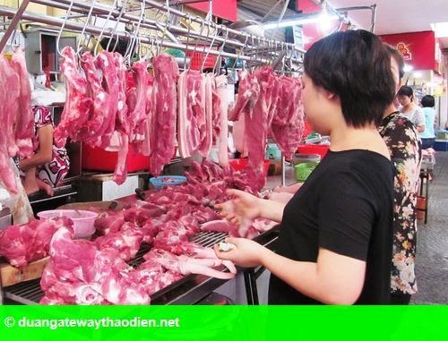 Hình 1: Ngành chăn nuôi heo gặp khó vì chất cấm