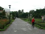wch_gyula__2010_355.jpg