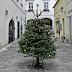بدء الاغلاق العام الثالث فى النمسا ويستمر حتى 17 يناير المقبل ...ولا تهاون في تطبيق الغرامات