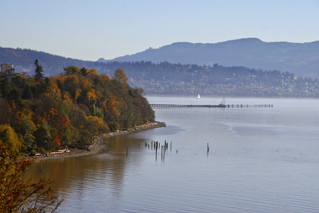 Bellingham Bay from EldridgeCredit: Peter James