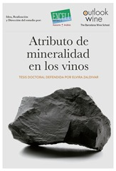 tesis-doctoral-la-mineralidad-de-los-vinos-2