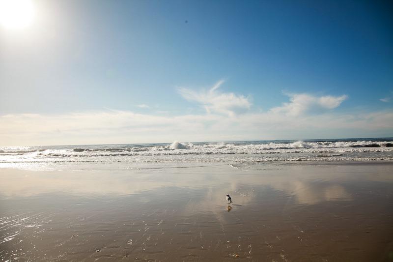 strand beach-10