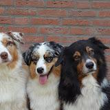 Pirlo,Gina en Indy