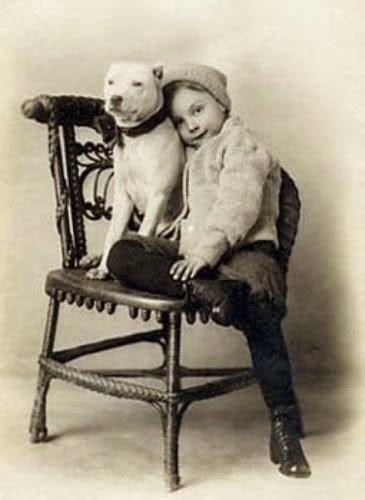 Uma criança e um Pit Bull em foto datada entre o século XIX e XX