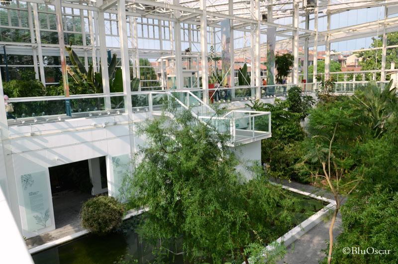 Orto Botanico Padova 15 06 2016 N 5