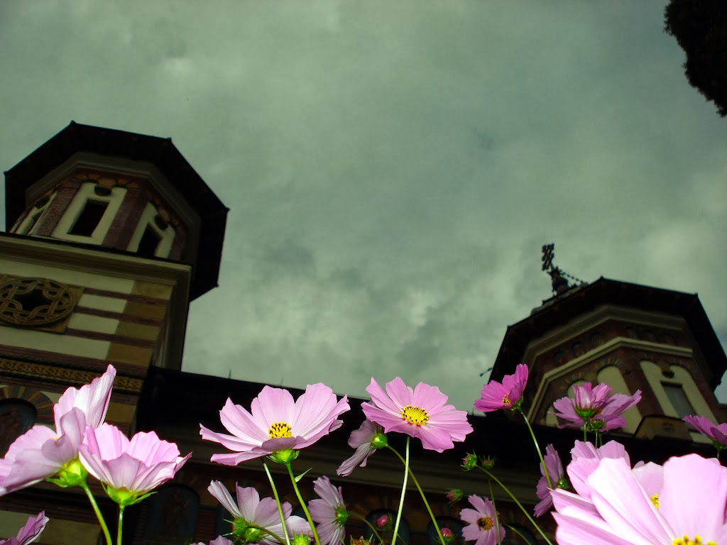 Flowers and religion