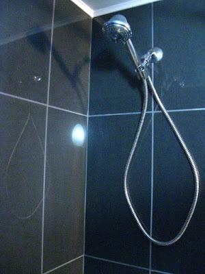 [Image: showerhead.JPG]