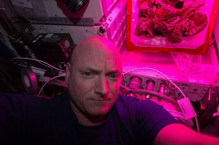 space-vegetables-3
