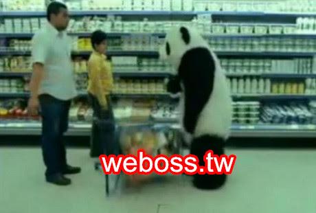 翻桌熊貓起司