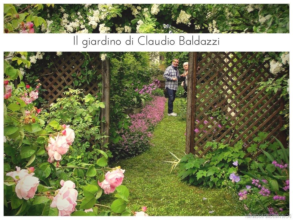 [Il+giardino+di+Claudio+%285%29%5B7%5D]