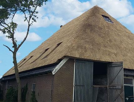 Elegancka stodoła z pokryciem trzcinowym