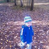 2008-10-12 Benjamin i skogen