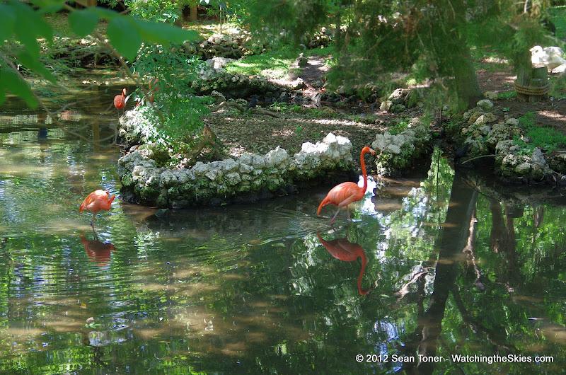 04-07-12 Homosassa Springs State Park - IMGP0046.JPG
