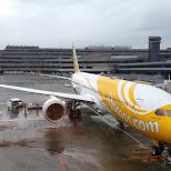 taking flyscoot to Tokyo, Japan in Taoyuan, T'ao-yuan, Taiwan