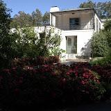 10-26-14 Dallas Arboretum - _IGP4283.jpg