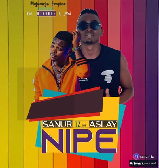 AUDIO | SANUR Ft. ASLAY – NIPE | Download new song