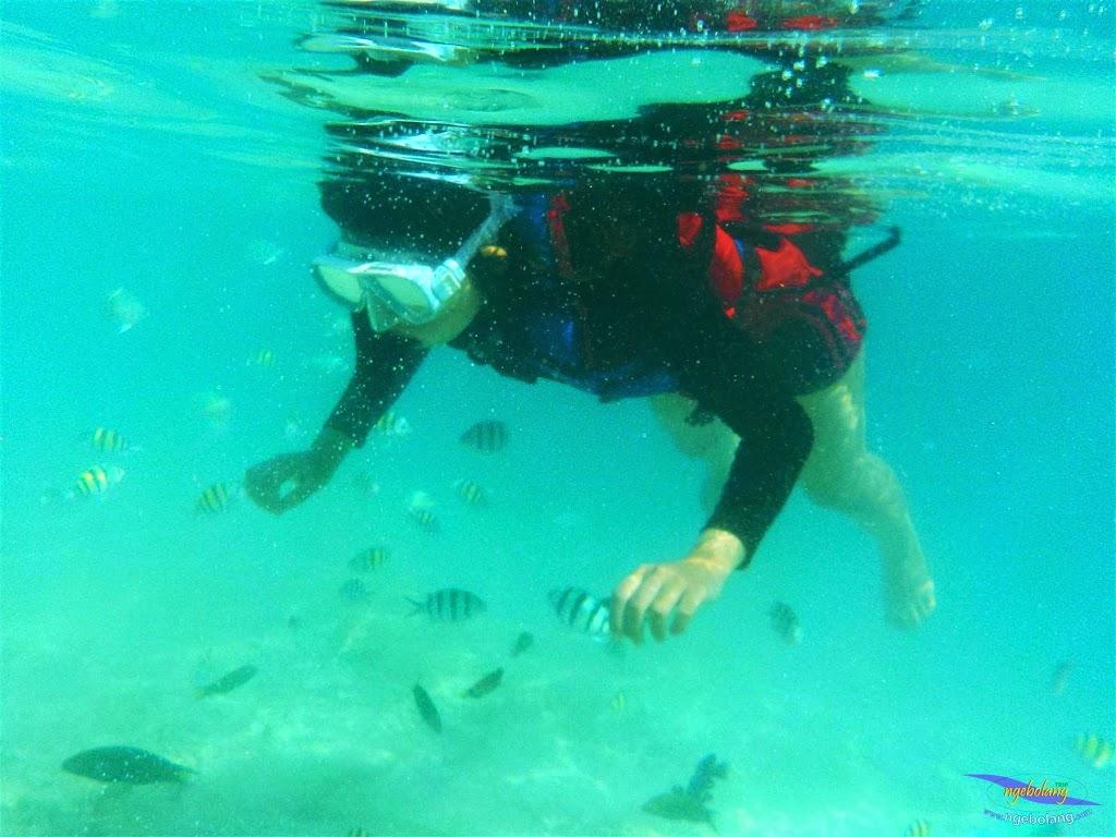 pulau harapan, 23-24 mei 2015 olympus 12
