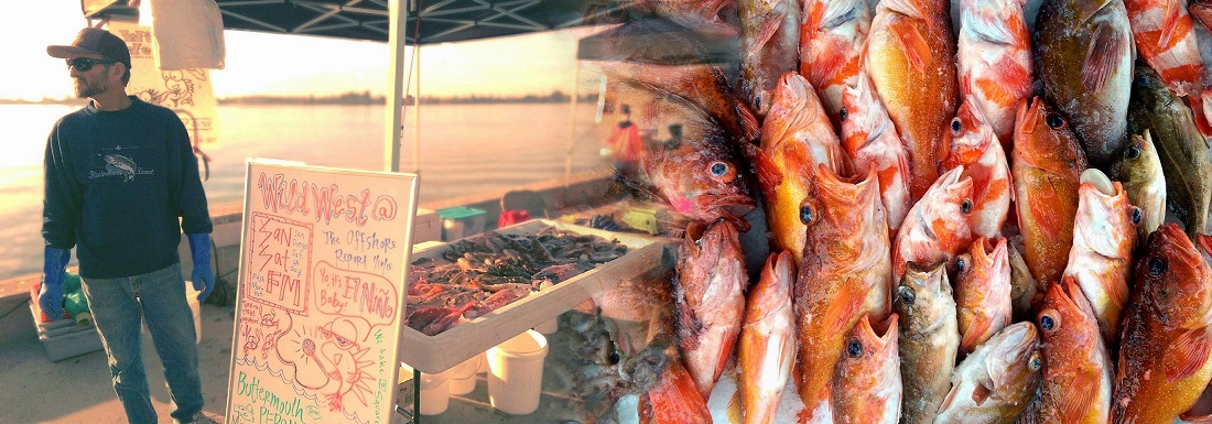 coastal rockfish, assorted rockfish, Tuna Harbor Dockside Market, local seafood