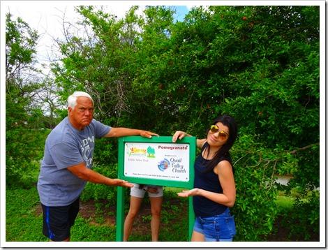 Edible Arbor Trail
