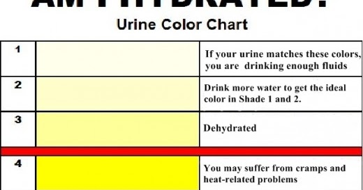 What The Color Of Your Urine Tells You About Your Health
