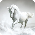 Horses Wallpaper – HD Backgrounds icon