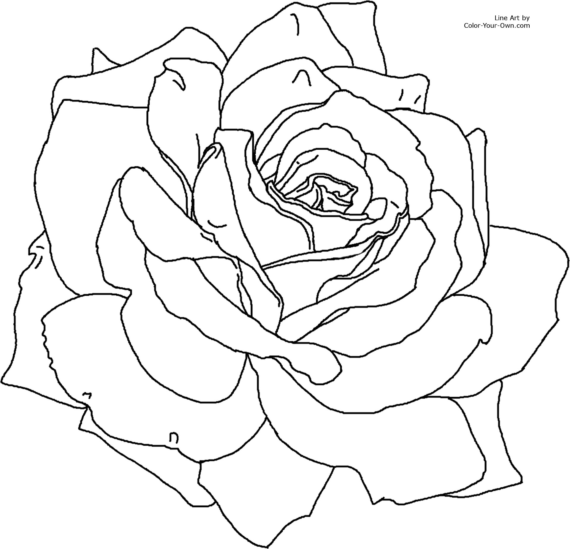 free rose coloring pages.html