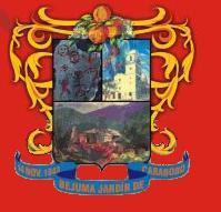 Escudo del municipio Bejuma