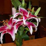 Bouquets - 101_0115.JPG