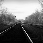 The Tracks.JPG