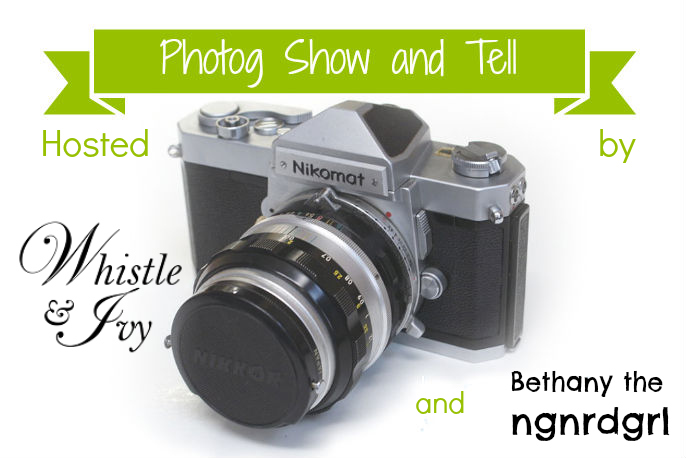 Introducting Photog Show and Tell Link Party