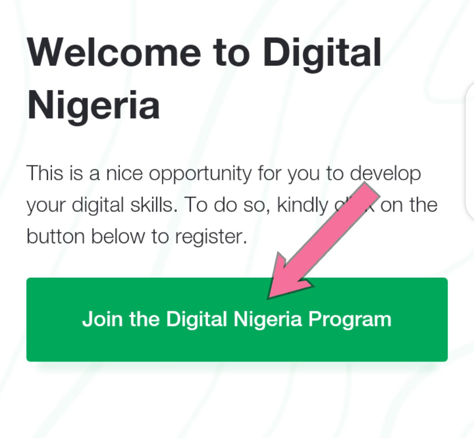 Digital Nigeria Programme Skills