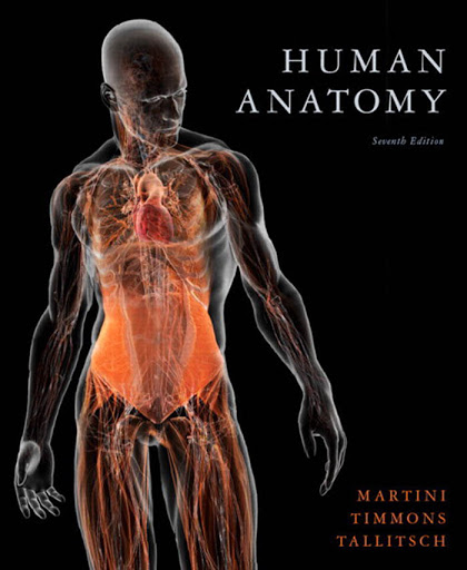 Human%252520Anatomy%2525207th%252520Edition%252520by%252520Martini Download: Human Anatomy , 7th edition