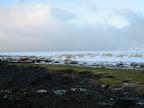 Küste Bessastadir