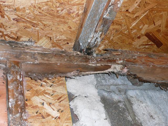 Carpentry - Water damage/after demo/ Cedarburg - P1000103.JPG