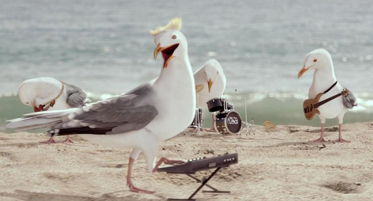 "A Real Flock of Seagulls Sing ""I Ran"" for Cap Cod Chips TVC"