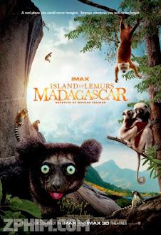 Hòn Đảo Của Vượn Cáo Ở Madagascar - Island of Lemurs: Madagascar (2014) Poster