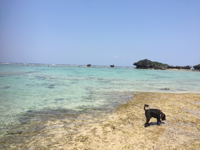 Maeda beach at low tide, with crystal waters great for snorkelling.
