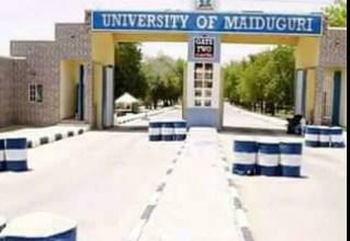 UNIMAID - Best Universities for Pharmacy in Nigeria
