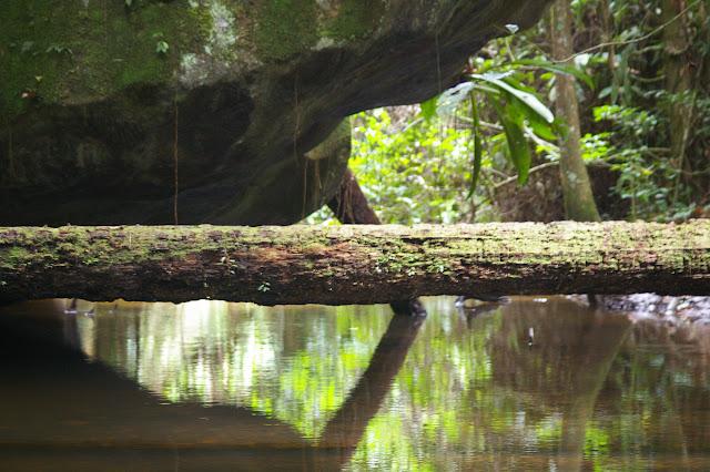 La Roche-bateau sur la Crique Nouvelle France, Saül (Guyane). 1er décembre 2011. Photo : J.-M. Gayman