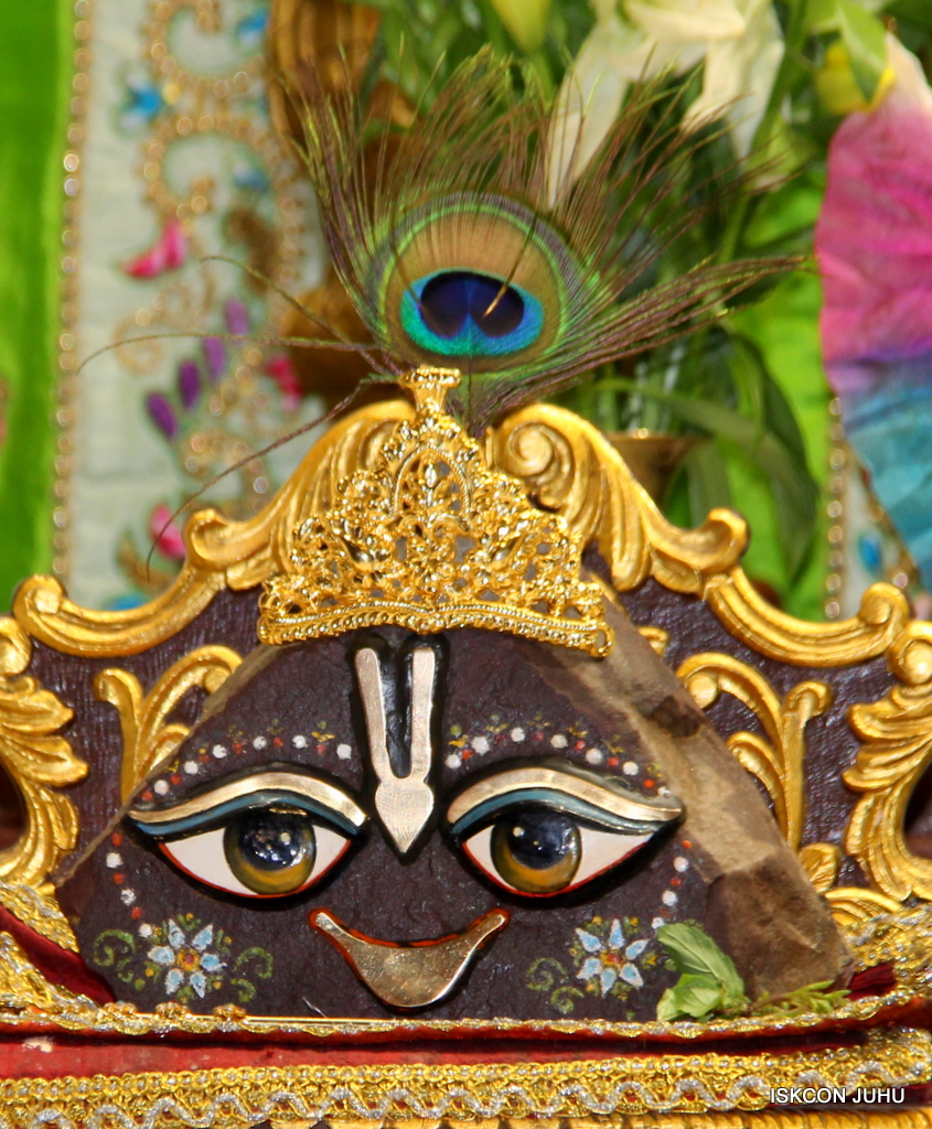 ISKCON Juhu Mangal Deity Darshan on 1st Jan 2016 (37)