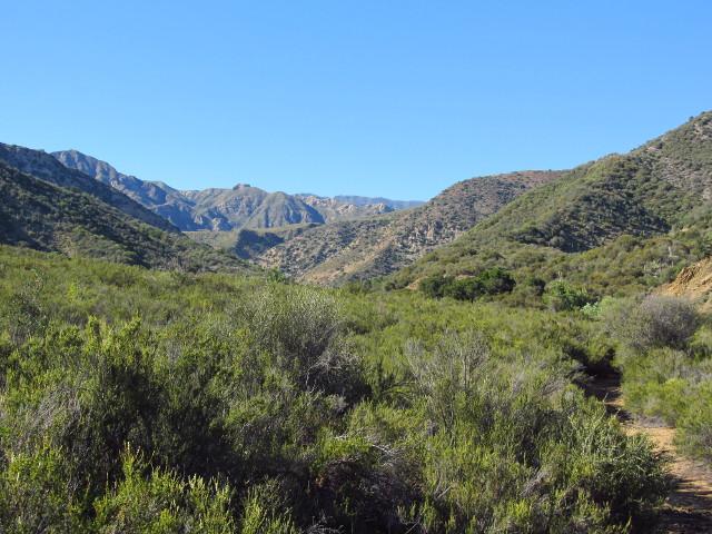 path and canyon