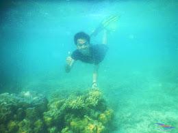 pulau pari, 23-24 mei 2015 31