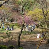 2014 Japan - Dag 7 - jordi-DSC_0330.JPG