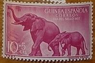 timbre Guinée espagnole 004