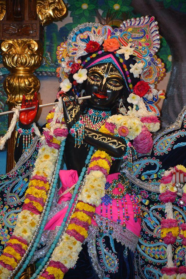 ISKCON Ujjain Deity Darshan 05 April 2016  (15)
