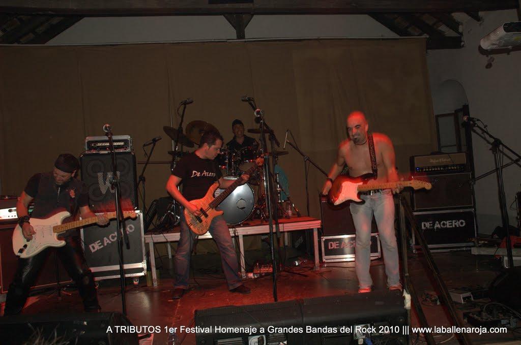 A TRIBUTOS 1er Festival Homenaje a Grandes Bandas del Rock 2010 - DSC_0181.jpg