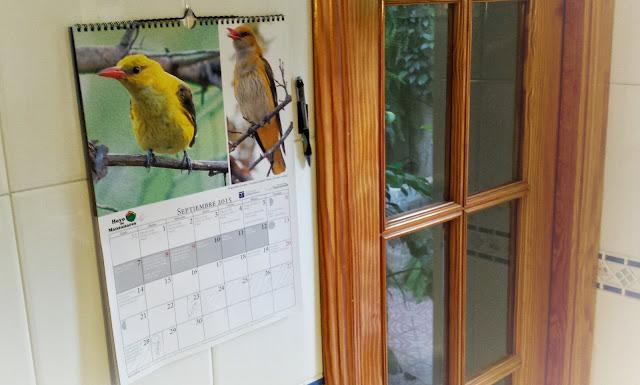 Calendario publicado por Ayunt. Hoyo del Manzanares con un montón de mis fotos